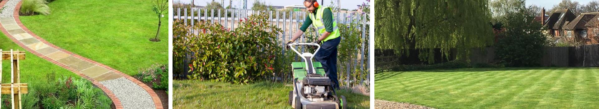 Dudley Gardener