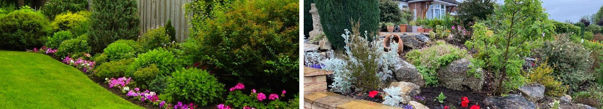 Northampton Gardener