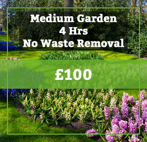 medium garden no waste removal